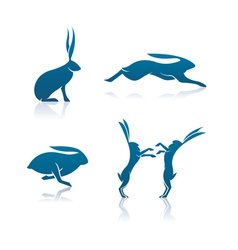 Hare icons vector