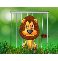 A scary lion inside the cage vector