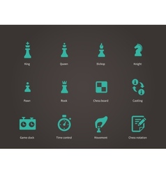 Chess pieces icons vector