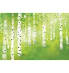 Spring birch forest vector