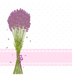 Purple lavender flower vector