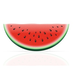 Watermelon 02 vector