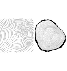 Tree rings background and tree log cutted vector