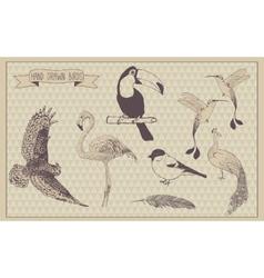 Birds set hand drawn bird vintage design vector