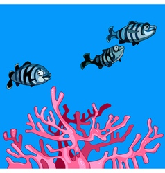 Underwater striped fish and coral pink vector