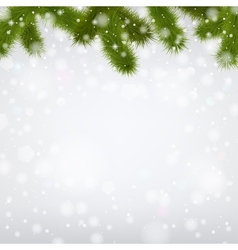 Christmas snowy background with fir branches vector