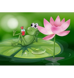 A frog above the waterlily vector