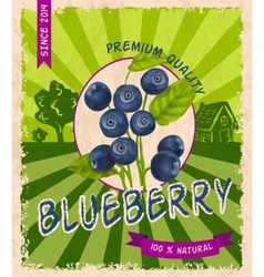 Blueberry retro poster vector