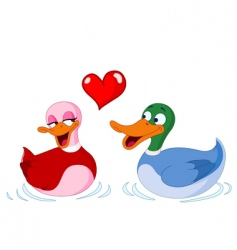 Ducks in love vector
