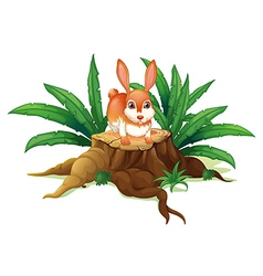 A rabbit above a trunk vector