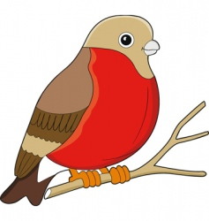 Bird cartoon vector