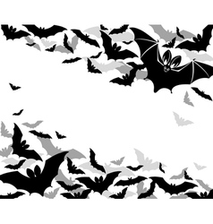 Background bats vector