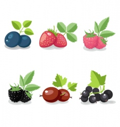 Summer berry set vector
