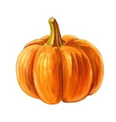 Picture of pumpkin vector