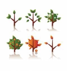Set of icons tree seasons vector