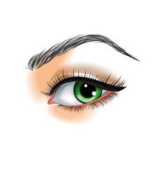 Eye make up vector