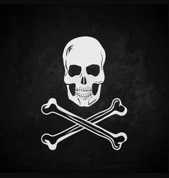 Pirate flag skull with crossed bones vector