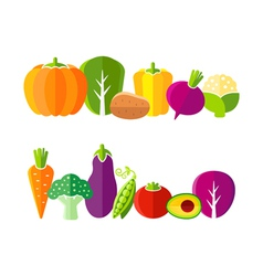 Organic farm vegetables in flat style vector