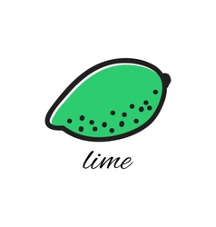 Hand drawn lime in doodle style vector
