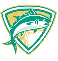 Bluefin tuna vector