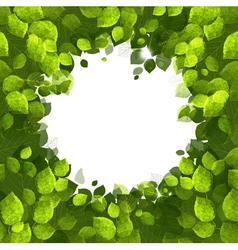 Summer banner of green foliage vector