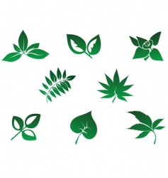 Set of leaves icon vector