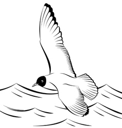 Seagull flying over the sea vector