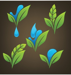 Plant and water vector