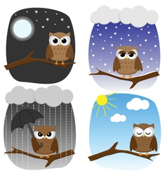 Seasonal owl vector
