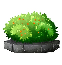 A flowering plant above the gray stone vector
