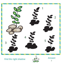 Find the shadow of picture vector