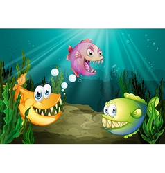 Three different kinds of fishes with big fangs vector