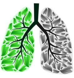 Lungs in danger vector