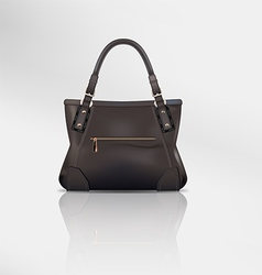 Leather handbag vector