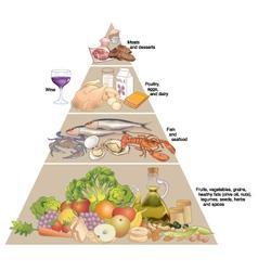Mediterranean diet pyramid vector