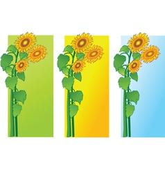 Sun flowers vector