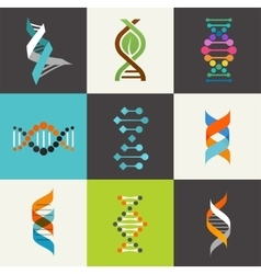 Dna genetic elements and icons collection vector