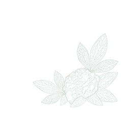 Card with a peony flower vector