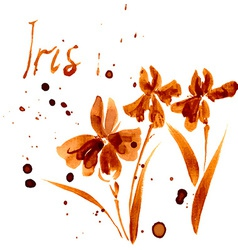 Iris flower watercolor vector