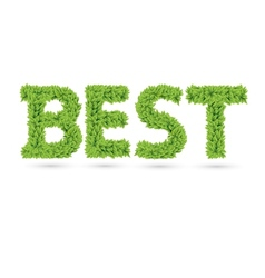 Best text of green leaves vector