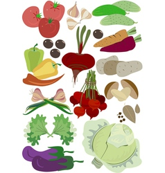 Autumn group vegetables for balanced diet vector