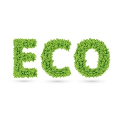 Eco text of green leaves vector