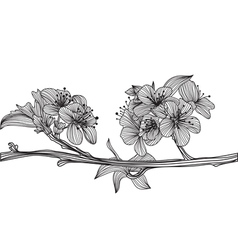 Decorative cherry blossom vector