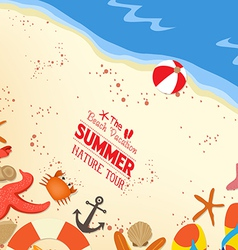 Flip-flops and shells on sand background vector