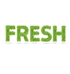 Fresh text of green leaves vector