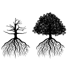 Isolated tree with roots vector