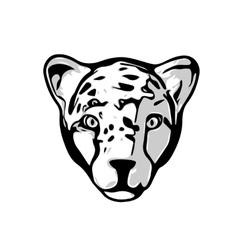 Head of cheetah vector