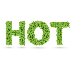 Hot text of green leaves vector
