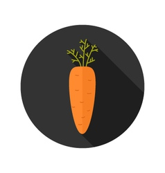 Carrot vegetable flat icon vector