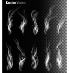 Set of transparent different smoke vector
